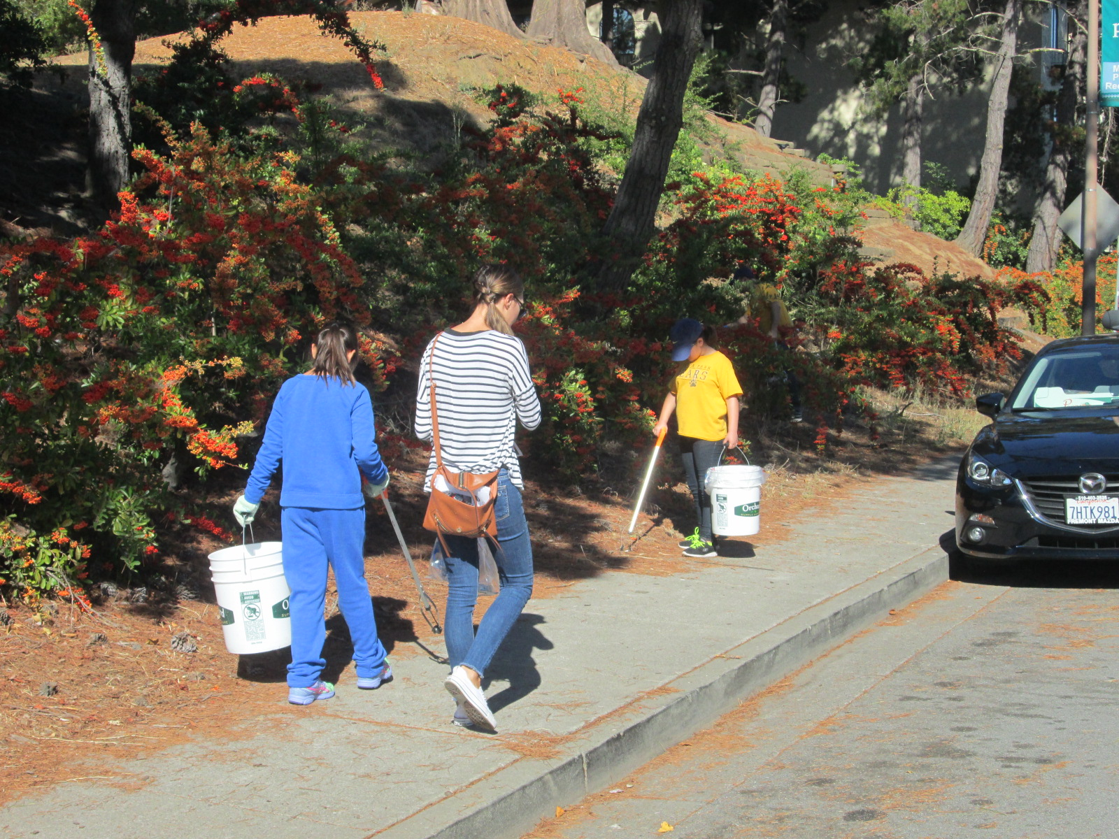 Volunteers collect litter near Central Park