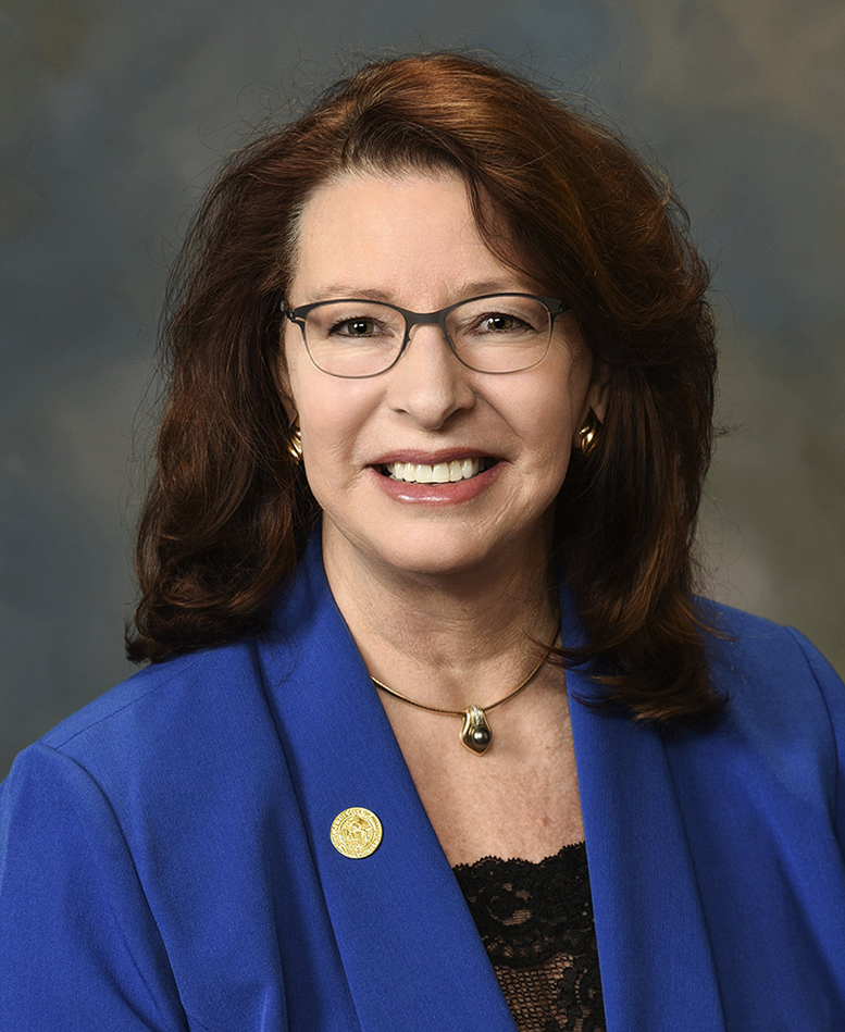 Council Member - Ann Schneider