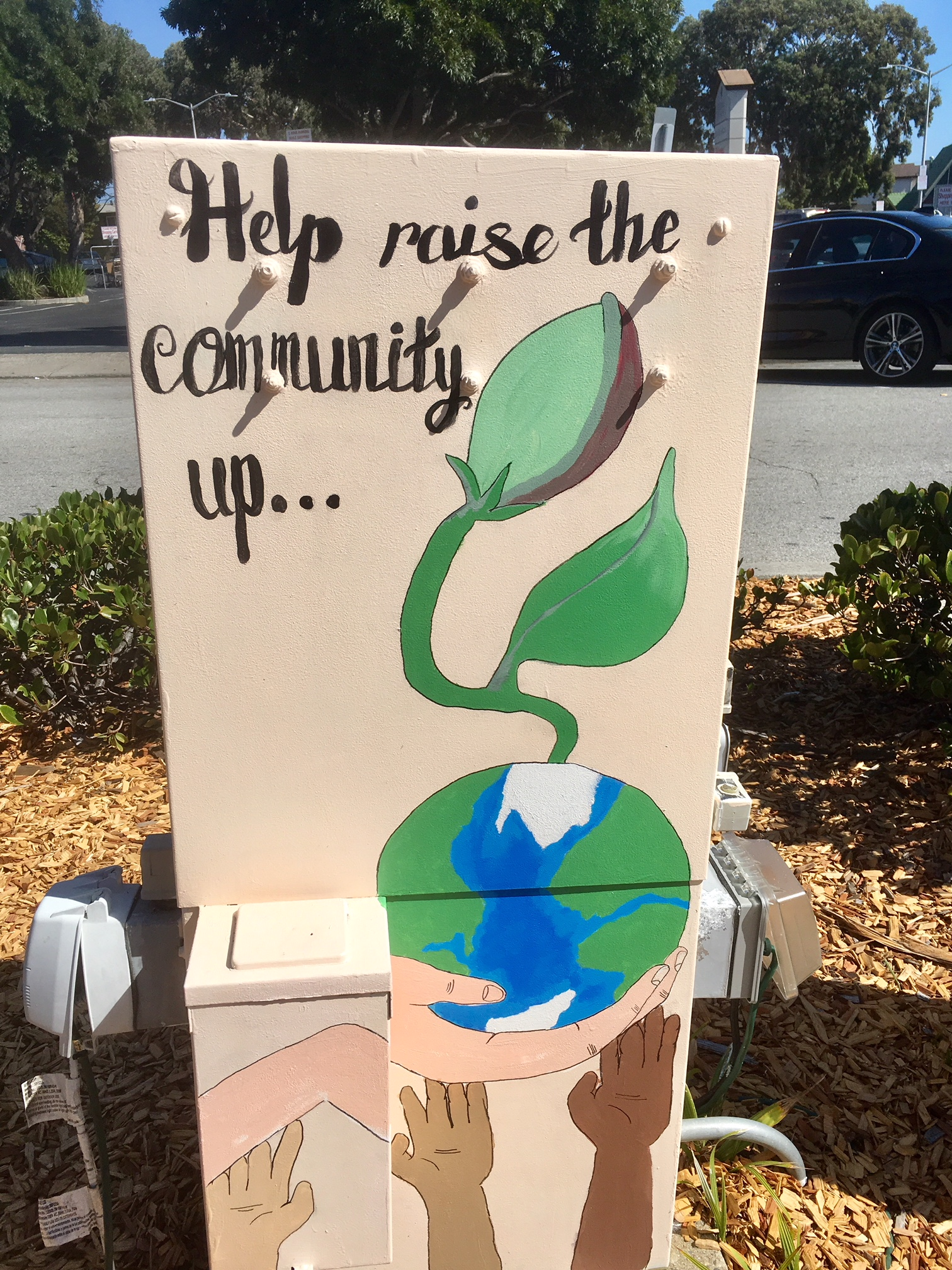 Cultural Arts Advisory Committee Utility Box Painting Project 2